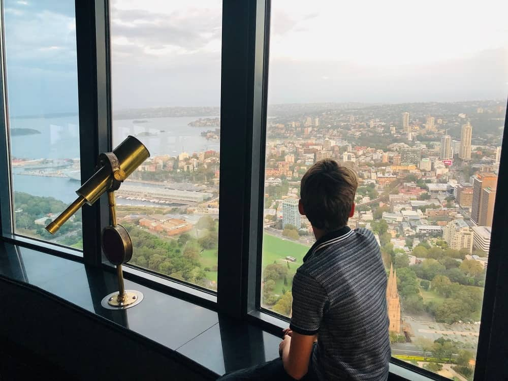 The view from Sydney Tower