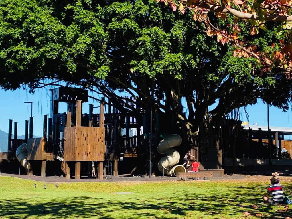 Fig-Tree-Park Cairns