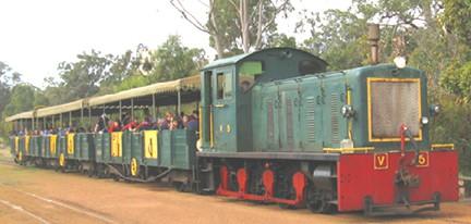 Forest Train Mandurah