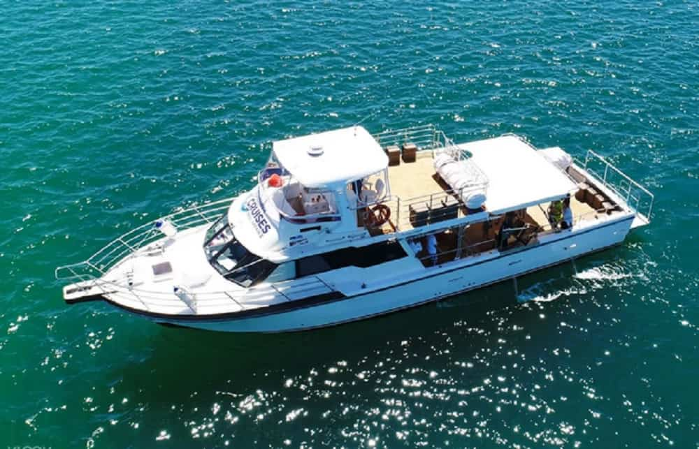 Wild Seafood Experience Cruise
